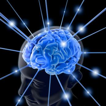 storytelling conversie brein