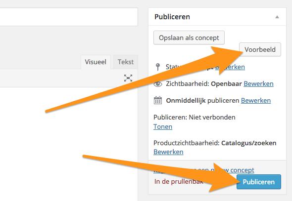 Voorbeeld_en_publiceren